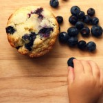 blueberry muffins | the vanilla bean blog