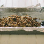 granola bars | the vanilla bean blog