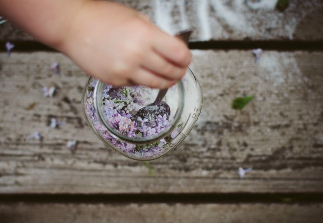 lilac sugar | the vanilla bean blog