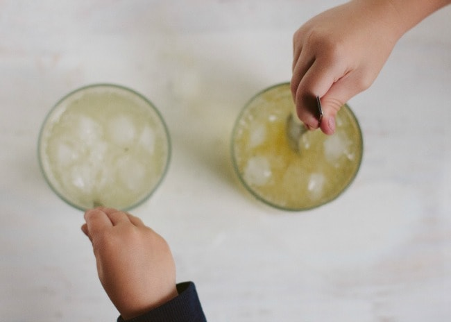 vanilla bean soda (with or without bourbon) | the vanilla bean blog