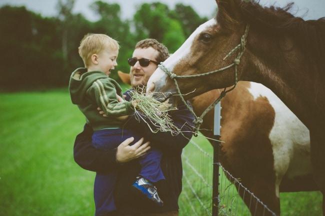 feeding horses | Sarah Kieffer