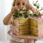 cake | the vanilla bean blog
