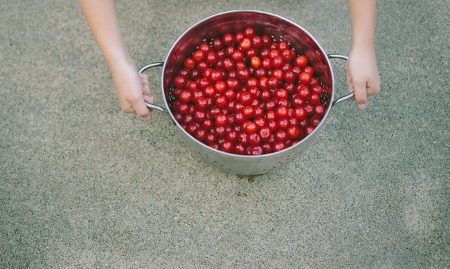 sour cherry shortcakes | the vanilla bean blog