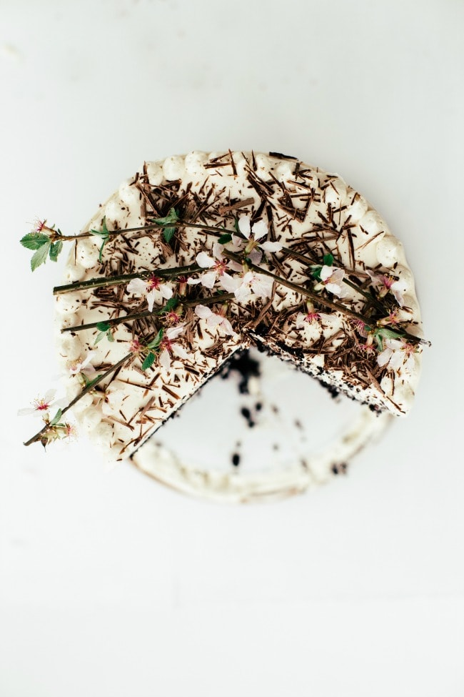 Chocolate Tiramisu Cake | Sarah Kieffer | The Vanilla Bean Blog